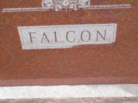 FALCON, FAMILY STONE - Linn County, Iowa | FAMILY STONE FALCON