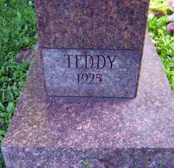 FALT, TEDDY - Linn County, Iowa | TEDDY FALT