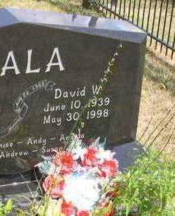 FIALA, DAVID W. - Linn County, Iowa   DAVID W. FIALA