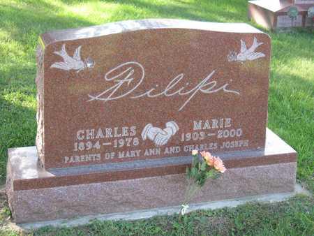FILIPI, CHARLES - Linn County, Iowa | CHARLES FILIPI