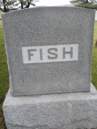 FISH, FAMILY STONE - Linn County, Iowa | FAMILY STONE FISH