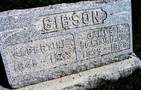 GIBSON, ALBERTINE - Linn County, Iowa | ALBERTINE GIBSON