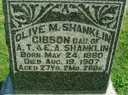 SHANKLIN GIBSON, OLIVE M. - Linn County, Iowa | OLIVE M. SHANKLIN GIBSON