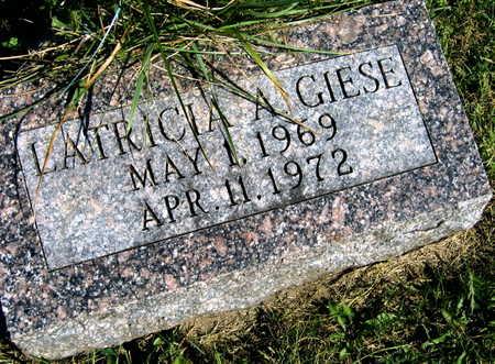 GIESE, LATRICIA A. - Linn County, Iowa   LATRICIA A. GIESE