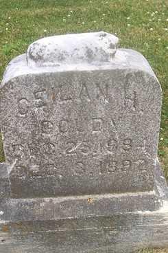 GOUDY, CEILAN H. - Linn County, Iowa | CEILAN H. GOUDY