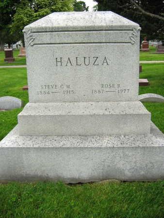 HALUZA, STEVE C. M. - Linn County, Iowa | STEVE C. M. HALUZA
