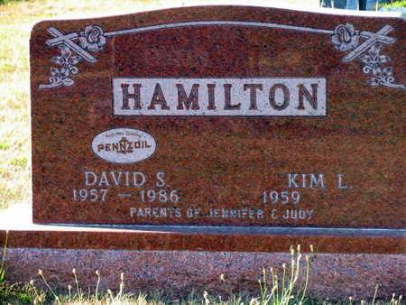 HAMILTON, DAVID S. - Linn County, Iowa | DAVID S. HAMILTON