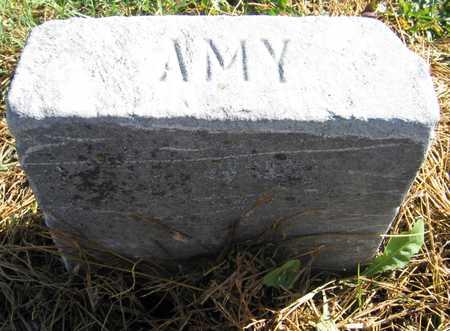 HAMPTON, AMY - Linn County, Iowa | AMY HAMPTON