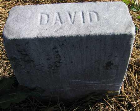 HAMPTON, DAVID - Linn County, Iowa | DAVID HAMPTON