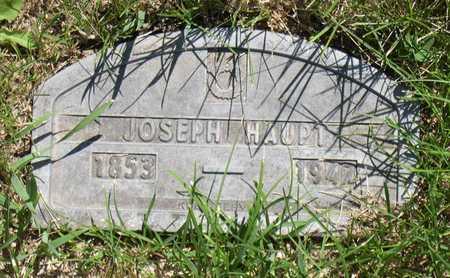 HAUPT, JOSEPH - Linn County, Iowa | JOSEPH HAUPT
