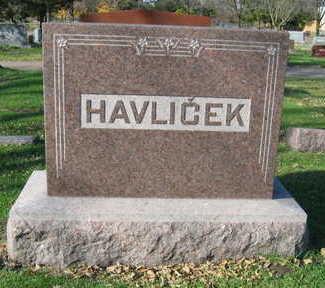 HAVLICEK, FAMILY STONE - Linn County, Iowa   FAMILY STONE HAVLICEK