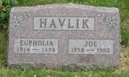HAVLIK, JOE - Linn County, Iowa | JOE HAVLIK