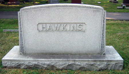 HAWKINS, FAMILY STONE - Linn County, Iowa   FAMILY STONE HAWKINS