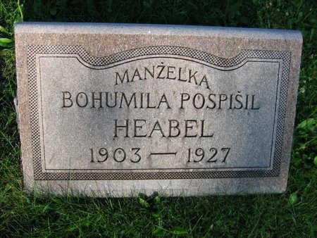 HEABEL, BOHUMILA - Linn County, Iowa | BOHUMILA HEABEL