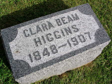 HIGGINS, CLARA - Linn County, Iowa | CLARA HIGGINS