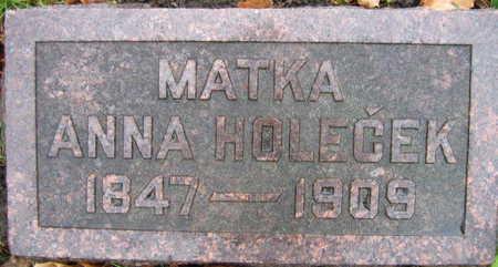 HOLECEK, ANNA - Linn County, Iowa   ANNA HOLECEK