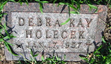 HOLECEK, DEBRA KAY - Linn County, Iowa | DEBRA KAY HOLECEK