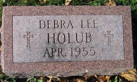 HOLUB, DEBRA LEE - Linn County, Iowa | DEBRA LEE HOLUB