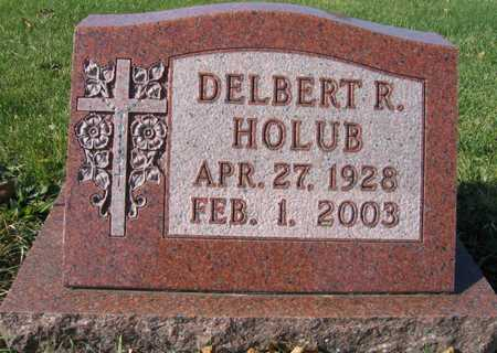 HOLUB, DELBERT R. - Linn County, Iowa | DELBERT R. HOLUB