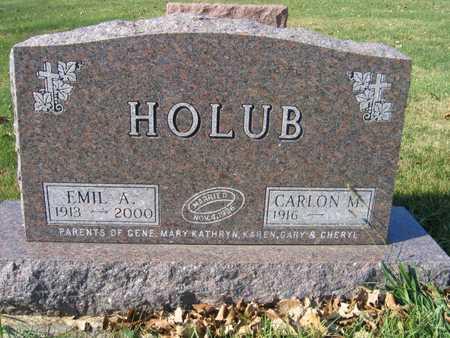 HOLUB, EMIL A. - Linn County, Iowa | EMIL A. HOLUB