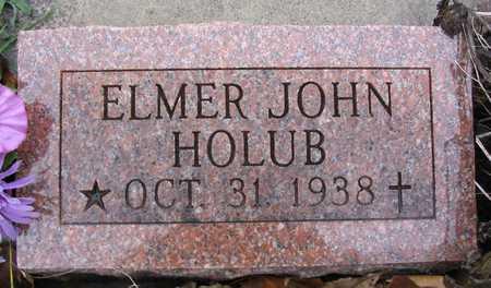 HOLUB, ELMER JOHN - Linn County, Iowa | ELMER JOHN HOLUB