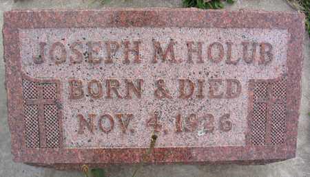 HOLUB, JOSEPH M. - Linn County, Iowa   JOSEPH M. HOLUB