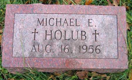 HOLUB, MICHAEL E. - Linn County, Iowa | MICHAEL E. HOLUB