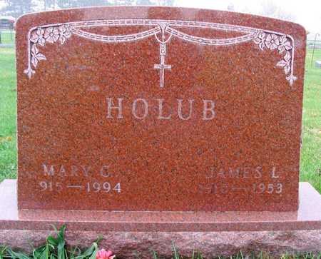 HOLUB, JAMES L. - Linn County, Iowa | JAMES L. HOLUB