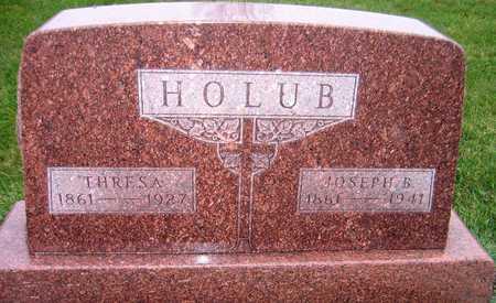 HOLUB, JOSEPH B. - Linn County, Iowa | JOSEPH B. HOLUB
