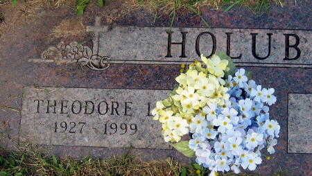 HOLUB, THEODORE L. - Linn County, Iowa | THEODORE L. HOLUB