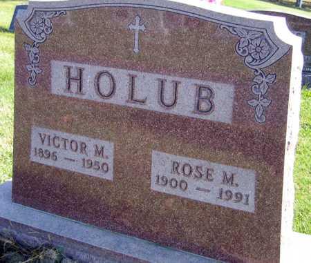 HOLUB, ROSE M. - Linn County, Iowa   ROSE M. HOLUB