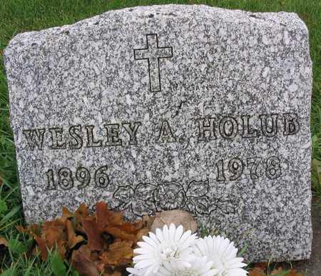 HOLUB, WESLEY A. - Linn County, Iowa | WESLEY A. HOLUB