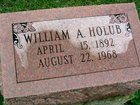 HOLUB, WILLIAM A. - Linn County, Iowa   WILLIAM A. HOLUB