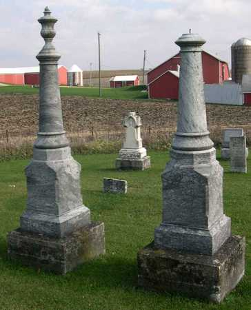 HOUSE, FAMILY STONE - Linn County, Iowa | FAMILY STONE HOUSE