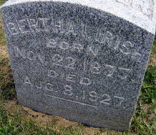 IRISH, BERTHA I. - Linn County, Iowa | BERTHA I. IRISH