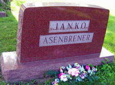 JANKO ASENBRENER, FAMILY STONE - Linn County, Iowa | FAMILY STONE JANKO ASENBRENER