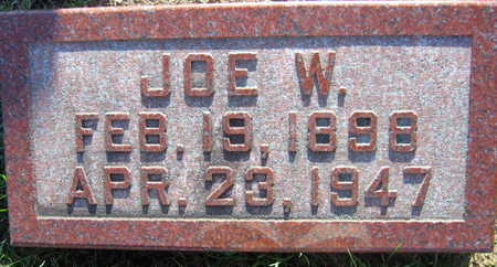 JANSA, JOE W. - Linn County, Iowa   JOE W. JANSA