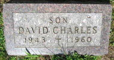 JELINEK, DAVID CHARLES - Linn County, Iowa   DAVID CHARLES JELINEK