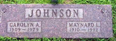 JOHNSON, CAROLYN A. - Linn County, Iowa | CAROLYN A. JOHNSON