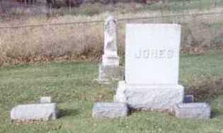 JONES, JOHN Y. (FAMILY PLOT) - Linn County, Iowa   JOHN Y. (FAMILY PLOT) JONES