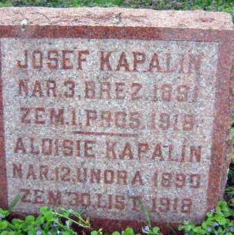 KAPALIN, JOSEF - Linn County, Iowa | JOSEF KAPALIN