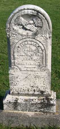 KEARNS, JOSEPH - Linn County, Iowa | JOSEPH KEARNS