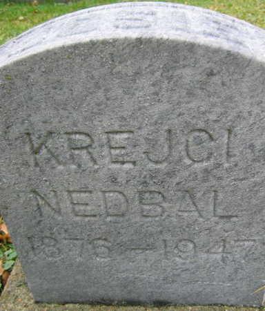 KREJCI NEDBAL, JOSIE - Linn County, Iowa | JOSIE KREJCI NEDBAL