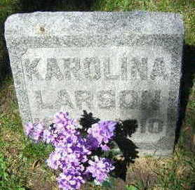 LARSON, KAROLINA - Linn County, Iowa | KAROLINA LARSON