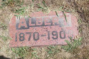 LARY, ALBERT - Linn County, Iowa | ALBERT LARY