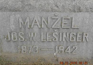 LESINGER, JOSEPH W. - Linn County, Iowa | JOSEPH W. LESINGER