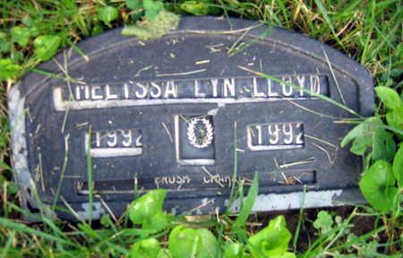 LLOYD, MELISSA LYN - Linn County, Iowa | MELISSA LYN LLOYD