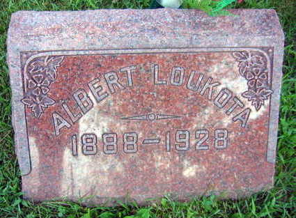 LOUKOTA, ALBERT - Linn County, Iowa   ALBERT LOUKOTA