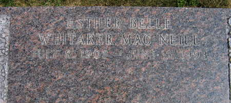 WHITAKER MAC NEILL, ESTHER BELLE - Linn County, Iowa | ESTHER BELLE WHITAKER MAC NEILL