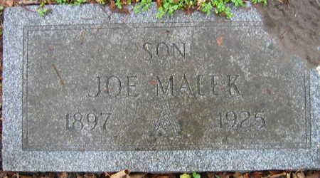 MALEK, JOE - Linn County, Iowa | JOE MALEK